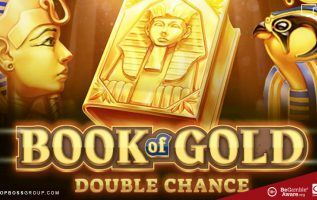 Book of Gold Double Chance Slot By Playson